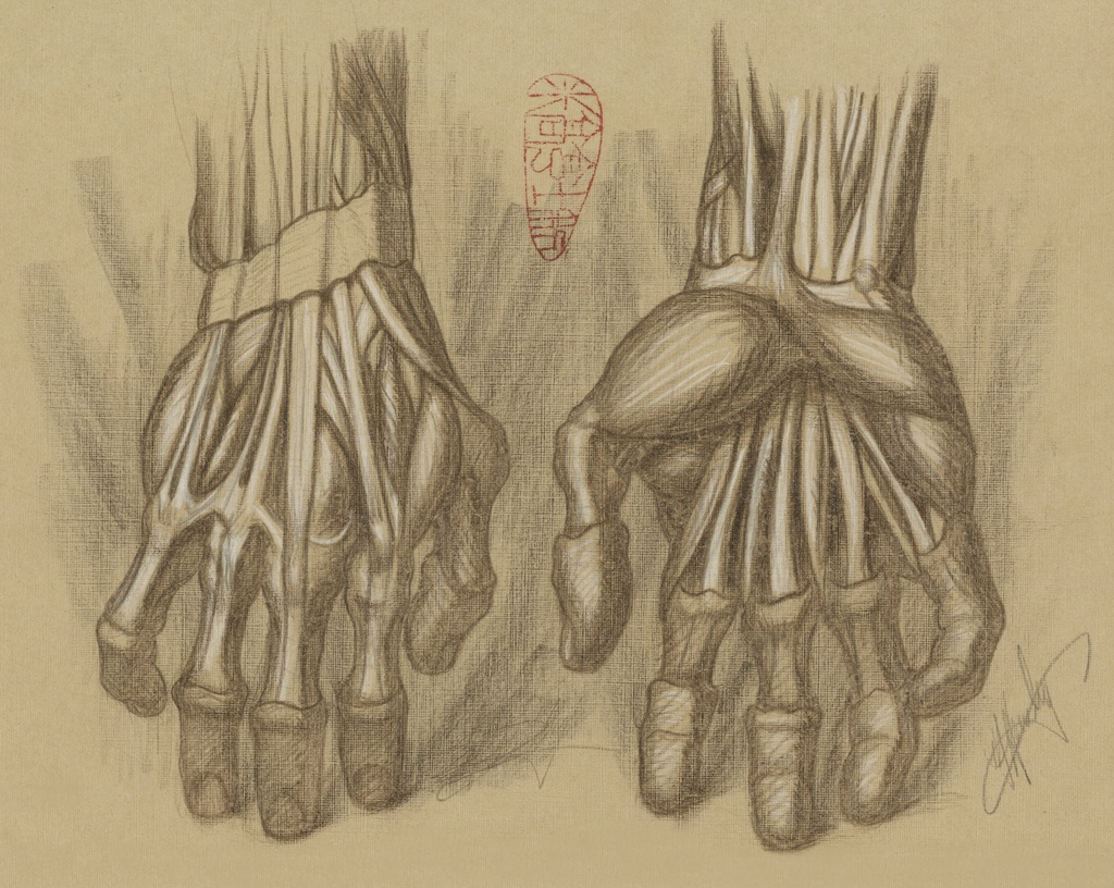 Michael Hensley Artistic Human Anatomy The Human Hand Foot