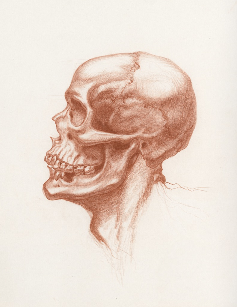 Michael Hensley, Artistic Human Anatomy, The Human Head