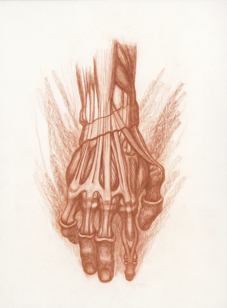 Michael Hensley, Artistic Human Anatomy, Life Drawing The Human Hand